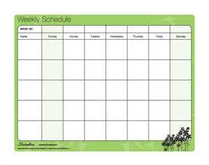 Study Timetable Template by Search Results For Daily Study Timetable Template