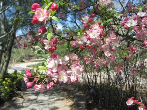 Botanical Gardens At Chatfield The Top 10 Things To Do Near Hton Inn Suites Denver Littleton