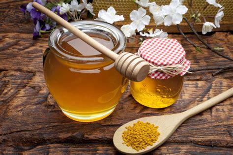 ab wann kindern honig geben rettich gesunde wurzel mit langer geschichte
