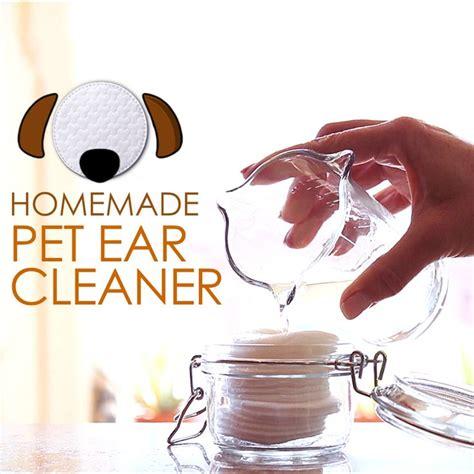 witch hazel for dogs best 25 ear cleaner ideas on