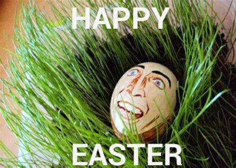 Hilarious Easter Memes - funny easter memes that will make your holiday 52 pics