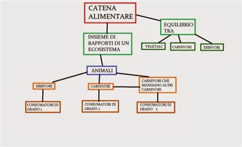 la catena alimentare la catena alimentare mappe scolastiche
