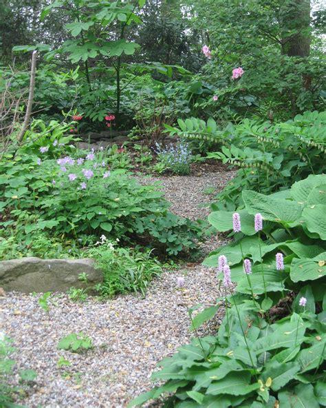 woodland garden ideas garden designer s bloglink 5 regional ideas miss