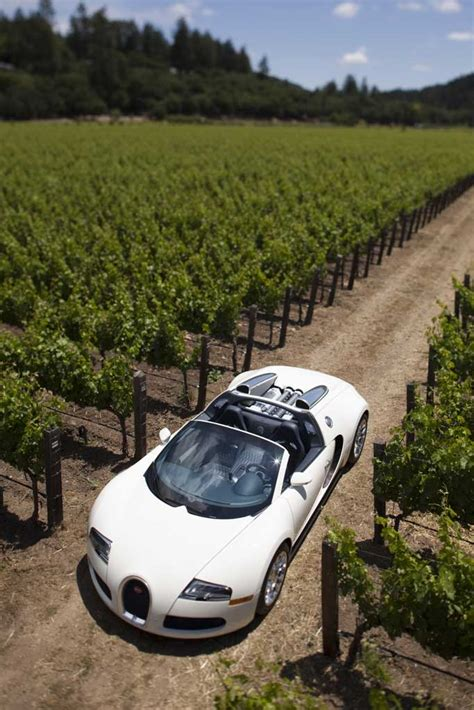 bijan bugatti vandalized bugatti veyron grand sport photo 5 11343