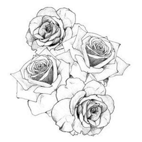 cluster of roses tattoo 11 best images about inspiration on