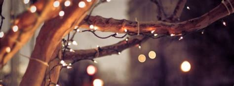 City Winter Tree Lights Facebook Covers Photography Fb Lights Cover Photo