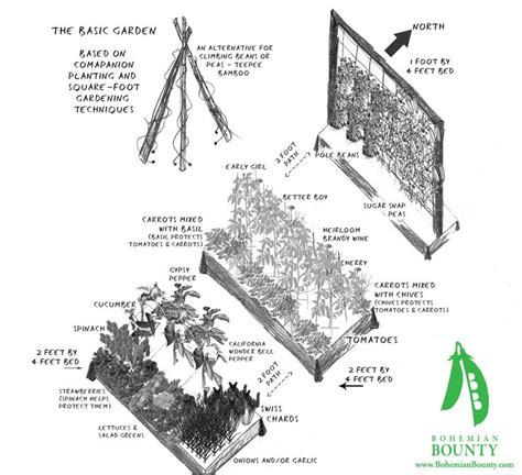 landscape layout rotation 17 best images about gardening charts tips on pinterest