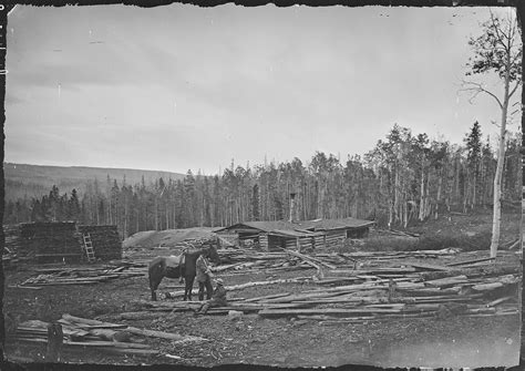 Summit County Utah Records File A Saw Mill In The Uinta Mountains Summit County Utah Nara 516920 Jpg