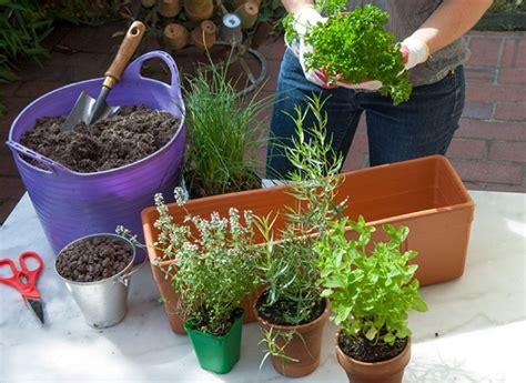 Plantation Herbes Aromatiques Jardiniere by Comment Installer Des Plantes Aromatiques Dans Une Jardini 232 Re