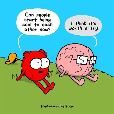 and brain an awkward yeti collection 168 best images about vs brain on