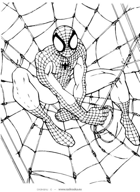 spiderman head coloring page free printable spiderman coloring pages for kids