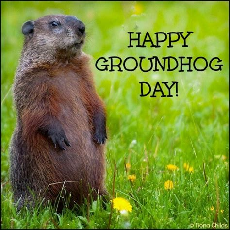 groundhog day like happy groundhog day ultimate travel wishlist