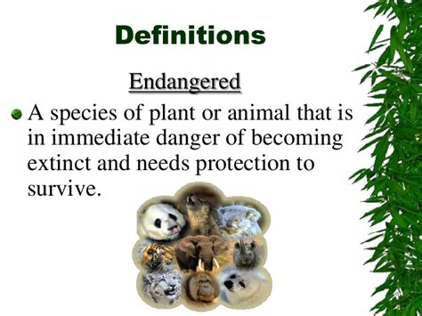 endangered species powerpoint
