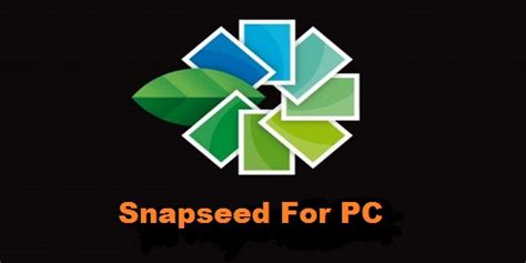 snapseed for android snapseed for pc on windows 8 1 8 7 10 mac android