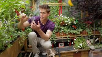 tiny williamsburg hipster garden urban gardener video youtube