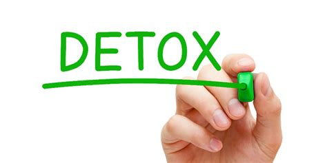 How To Detox From Alone by Staying Clean In A Toxic World Part 4 Of 4 The