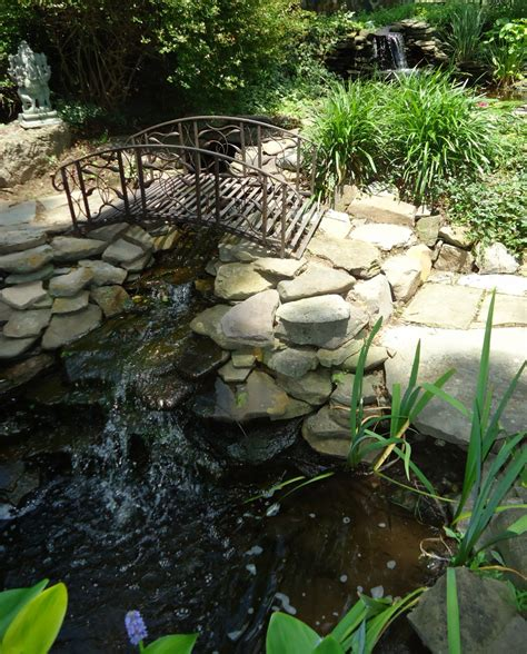 file garden pond with waterfalls and bridge and fish jpg wikimedia commons