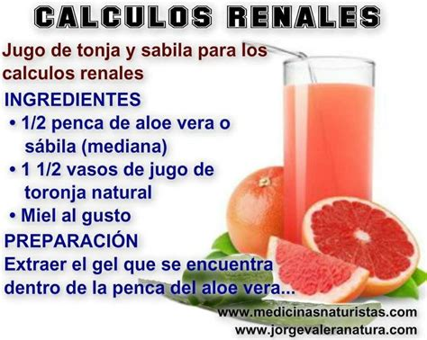 remedios naturales para enfermedades inediacom 1000 images about calculos renales on pinterest fruit