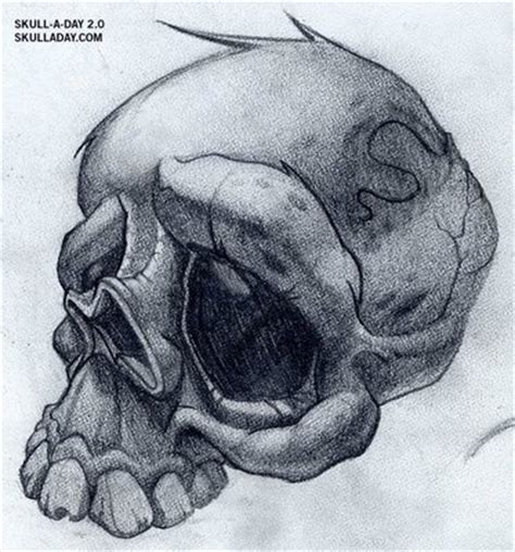 skull a day flash skulls jesse smith art pinterest