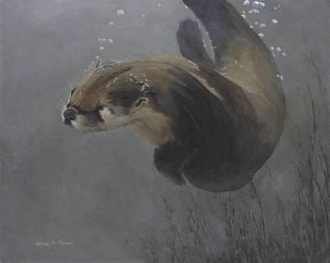 image gallery otter painting