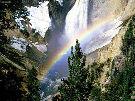 yellowstone lower falls waterfall in yellowstone nature lower falls yellowstone national park picture nr