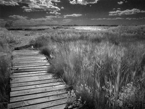 imagenes en blanco y negro paisajes foto de un paisaje en blanco y negro muchas fotos