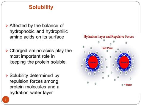 a hydration layer physical and chemical properties of proteins denaturation