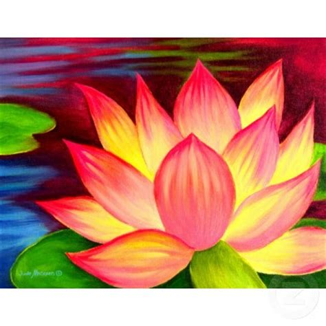 painting lotus flower lotus flower flower hd wallpapers images pictures