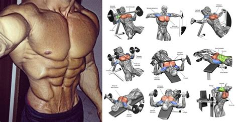 how to get a bigger chest 7 easy chest exercises to get