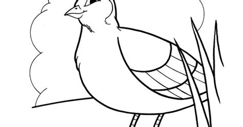 moses quail coloring page lord sends a quail coloring page bible moses
