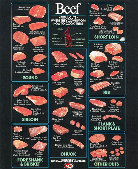 diagram cuts of beef the american cowboy chronicles cattle diagrams retail