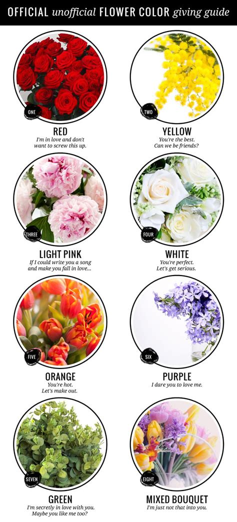 flower color meanings best 25 flower meanings ideas on meaning