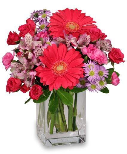 Just Flowers by Epic Bloomers Bouquet Just Because Flower Shop Network