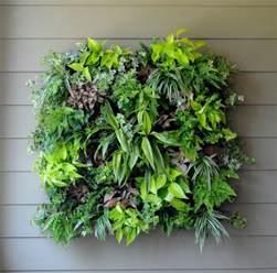 living wall planters living wall