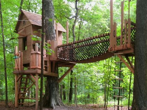 Backyard Zip Line Ideas Best 25 Zip Line Backyard Ideas On Treehouse