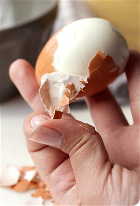 come cucinare un uovo sodo perfetto come preparare un perfetto uovo sodo passionando