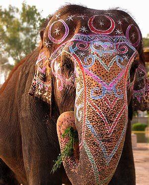 elephants rosenhaus interior design