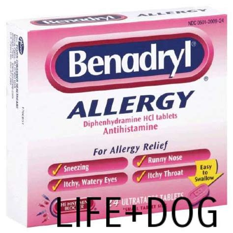 anxiety medication benadryl safe household medications and