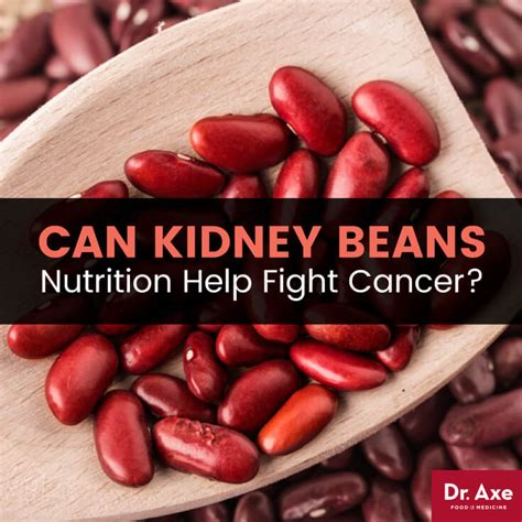 carbohydrates kidney beans top 5 benefits of kidney beans nutrition kidney beans