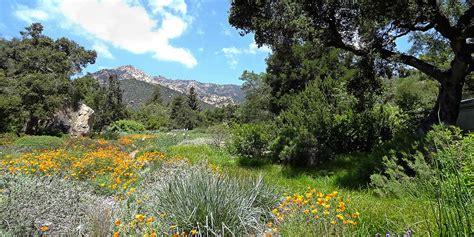 Sb Botanic Garden Santa Barbara Botanic Garden