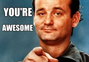 bill murray memes free a million pictures funniest memes