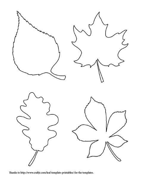 fall leaf template free coloring pages of leaf shapes