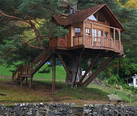 beautiful abodes the treehouse that your didn t build