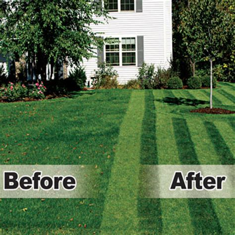lawn pattern roller lawn stryper pattern your lawn like the pros the green