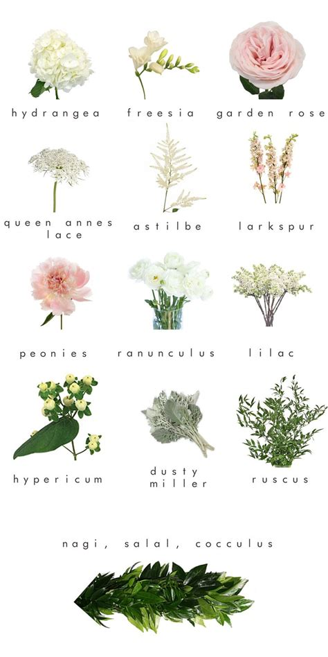 types of white flowers for wedding the 25 best bohemian flowers ideas on
