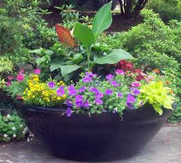 large sun container garden in a pot pinterest