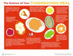 thanksgiving activities for fifth grade thanksgiving science worksheet education com