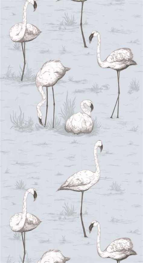 flamingo wallpaper cole and son cole and son wallpaper flamingos 8047
