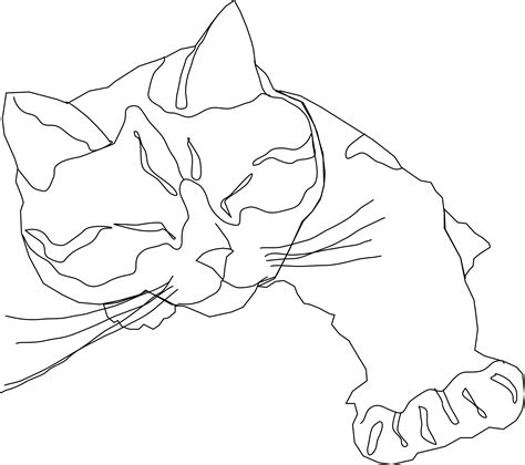 line drawing clipart sleepy calico cat line drawing only