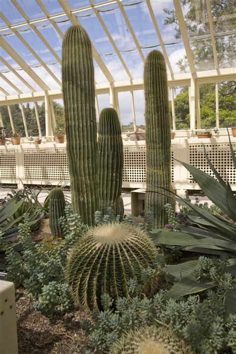 dublin national botanic gardens national botanic gardens of ireland botanic garden in
